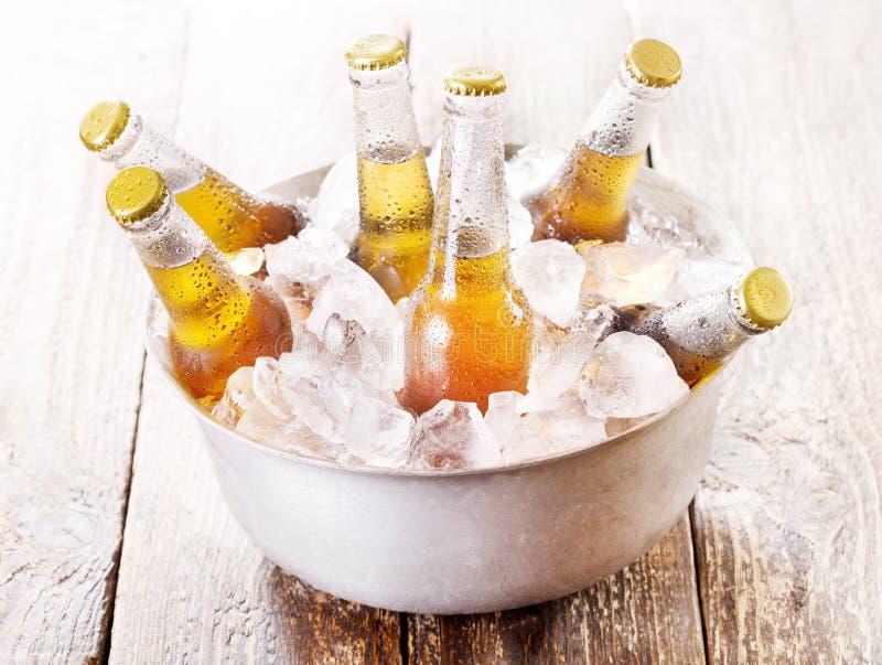 冷的瓶在桶的啤酒有冰的 库存图片