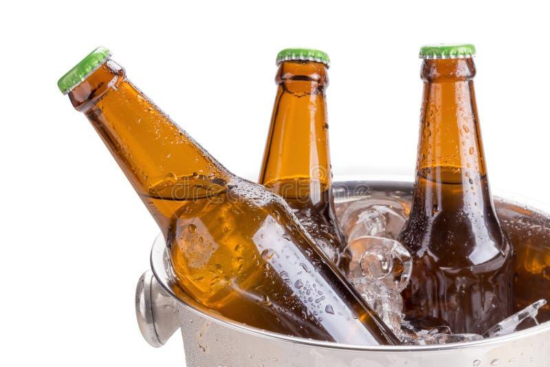 冷的瓶在桶的啤酒有在白色背景的冰的 图库摄影