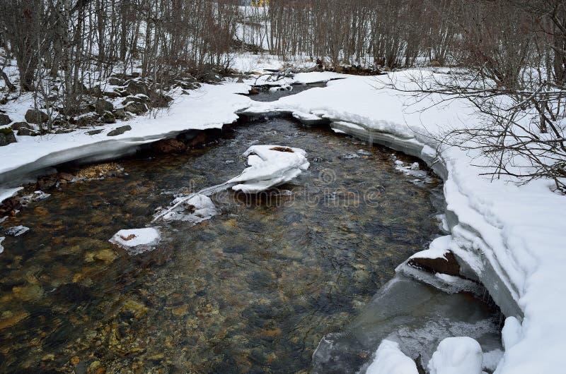 冷的结冰的山河小河在冷的冬天森林里在深北极圈原野 免版税图库摄影