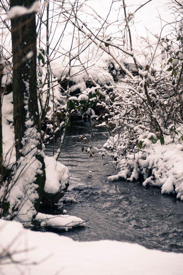 冷,冷漠的步行外面在雪! 免版税库存图片