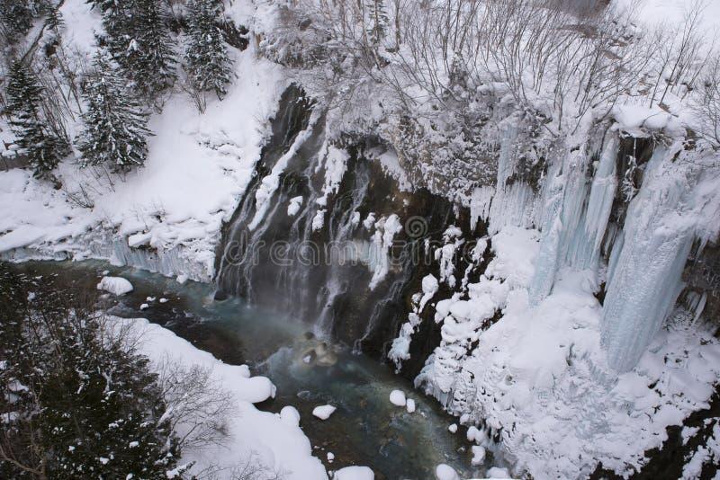 冻瀑布在Shirahige瀑布, Biei, Hokkaid的冬天 免版税库存照片