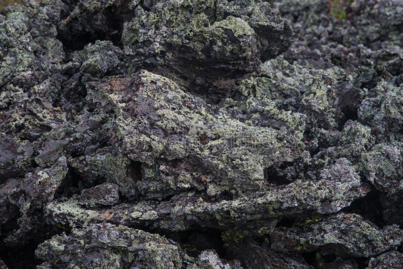 冻火山的熔岩特写镜头,盖用绿色青苔 数千在爆发以后的几年 免版税库存图片