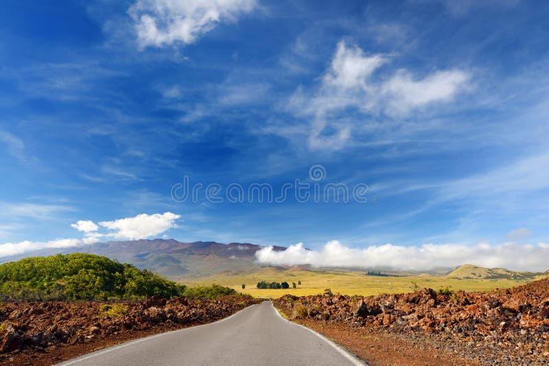 冻熔岩毛面在冒纳罗亚火山火山爆发以后的在大岛,夏威夷 图库摄影