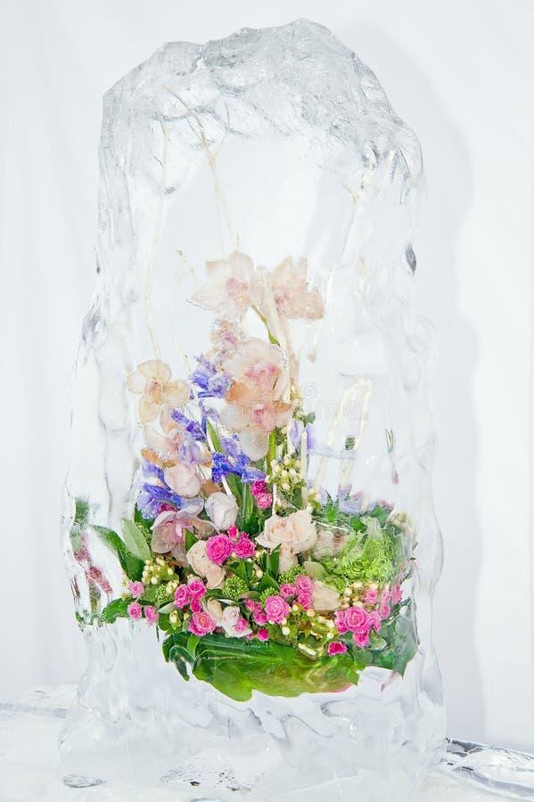 冻结五颜六色的花束 库存照片