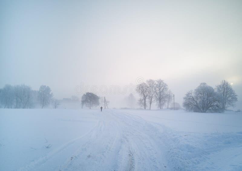 冻结和有雾的冬天早晨 库存照片