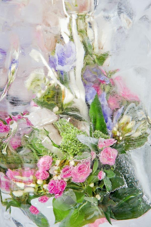 冻结淡色花束 库存图片