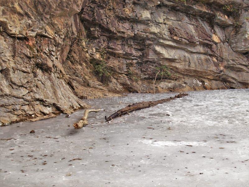 冻结的池塘和分支在垂悬的岩石国家公园 免版税图库摄影