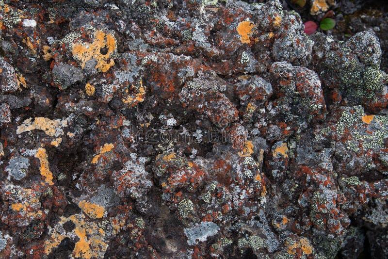 冻结的火山的colrful红色熔岩特写镜头数千在爆发以后的几年 库存照片