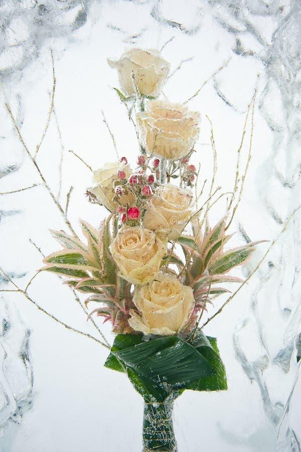 冻结空白玫瑰花束 库存照片