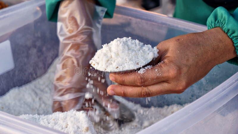 准备传统蛋糕的手由蒸汽米制成用椰奶和棕榈糖叫Putu Piring 图库摄影
