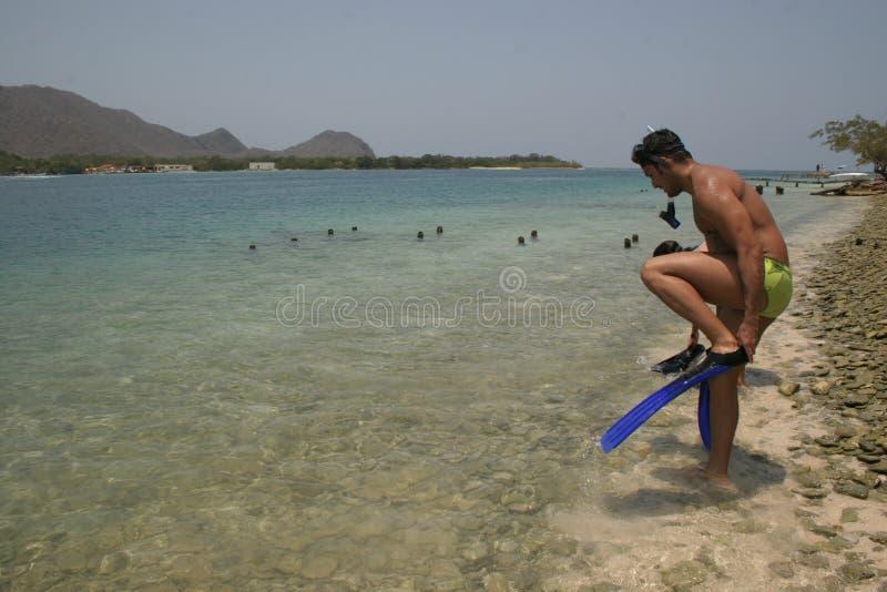 准备好一个英俊的人对潜航在一个美丽的海滩在加勒比 免版税库存照片