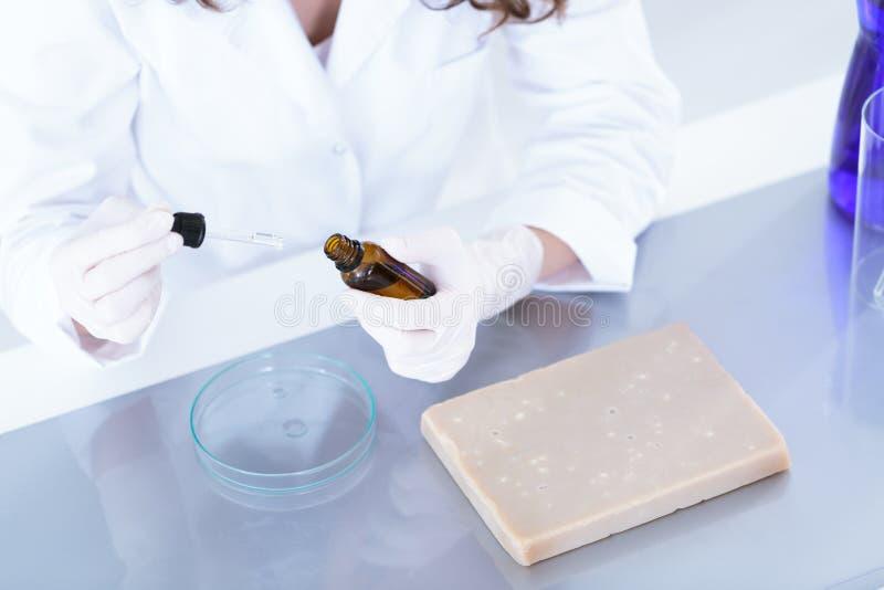 准备样品的试验室工怍人员 免版税库存图片