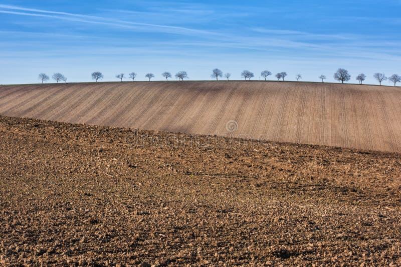 准备的可耕的农田,与蓝天的风景 免版税图库摄影