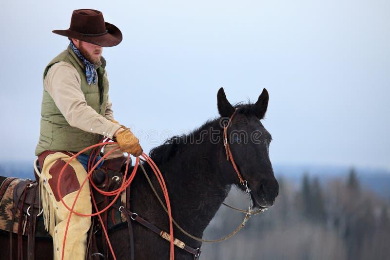 准备的牛仔系住 免版税图库摄影