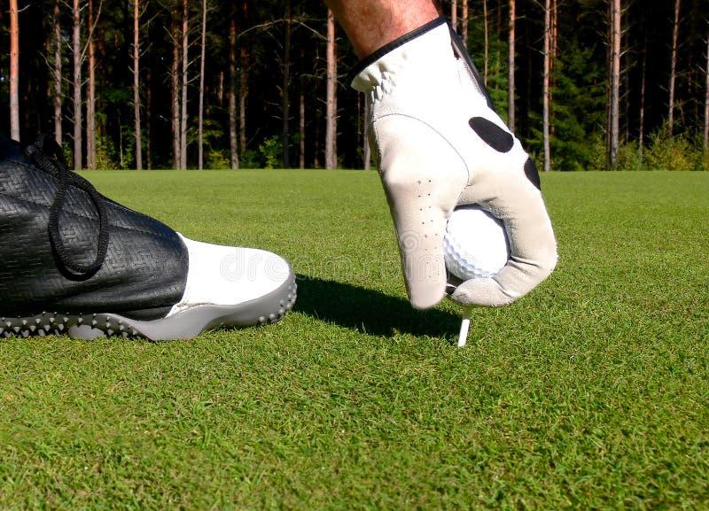 准备的高尔夫球  库存照片