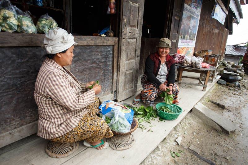 准备菜在钦邦,缅甸的地方妇女 库存照片
