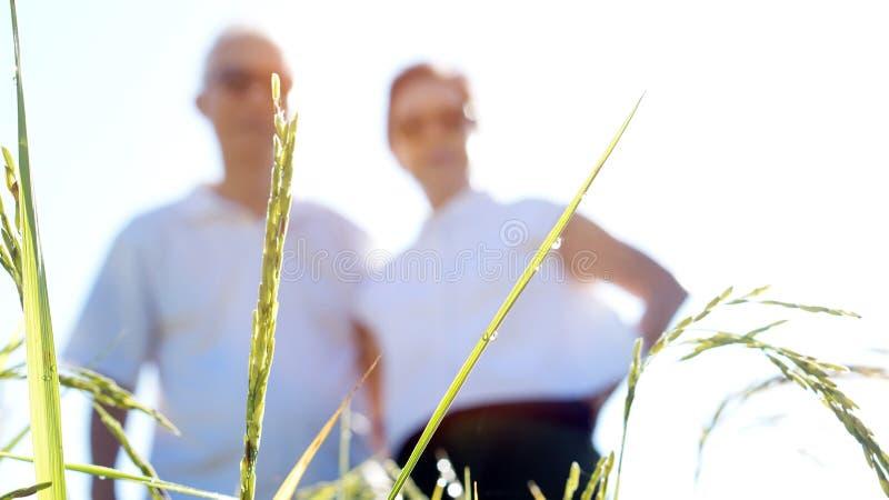 凉快的亚洲资深拥抱在前面的夫妇佩带的太阳镜 库存照片