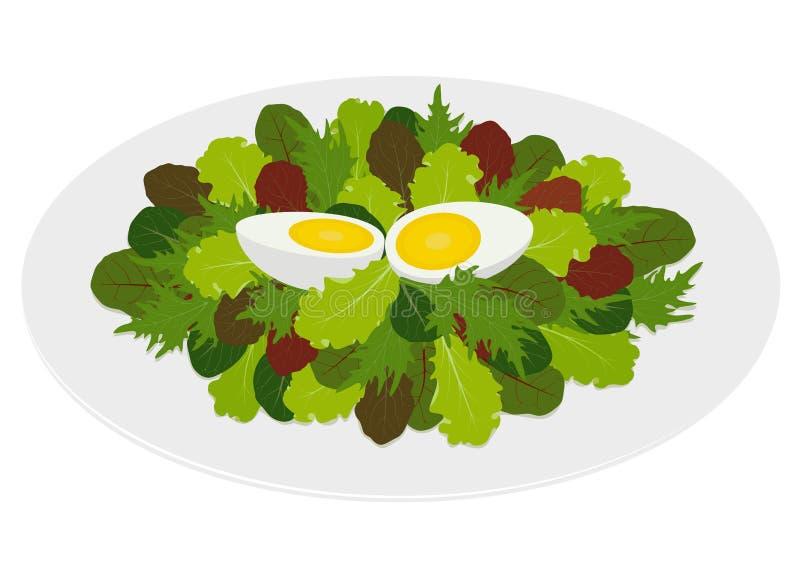 凉拌生菜叶子用水煮蛋 库存例证