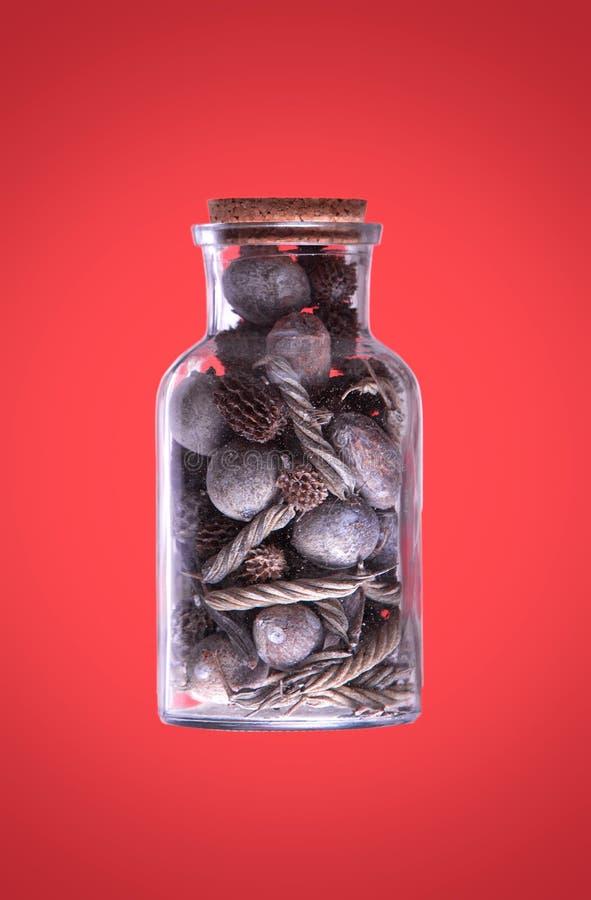 减速火箭有干燥植物珊瑚和海石头的一个瓶在红色 库存照片