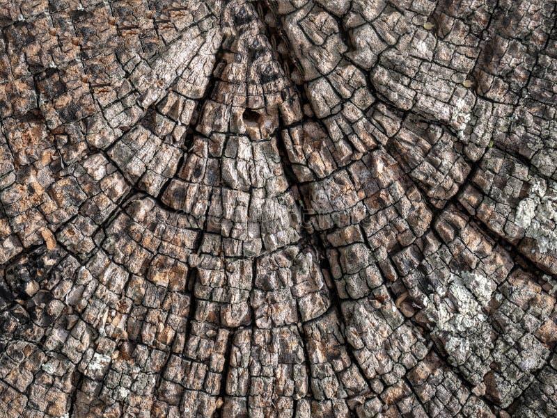 减速火箭的古色古香的脏的木头,伟大为背景 免版税库存图片