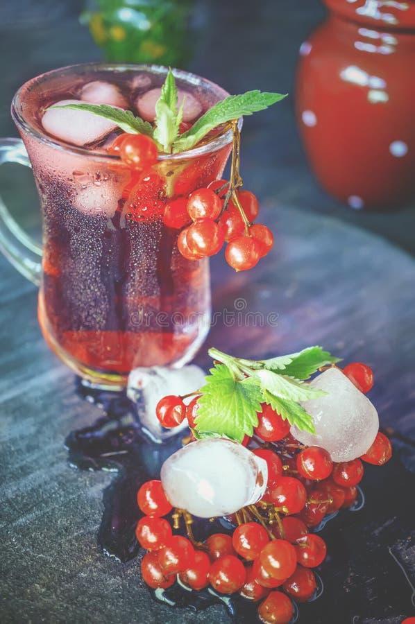 减重的有用的戒毒所饮料与从蔓越桔和荚莲属的植物的冰在一个土气样式 免版税图库摄影
