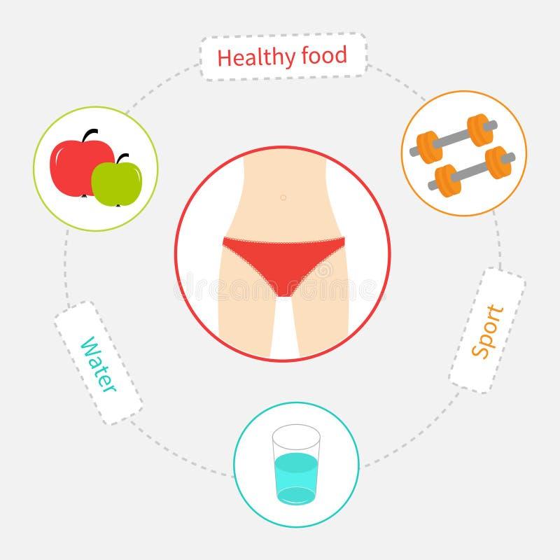 减重破折号线infographic的圈子 健康 库存例证