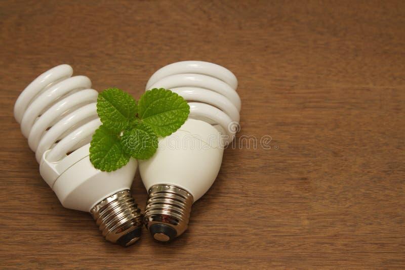 紧凑荧光灯电灯泡,绿色概念 图库摄影