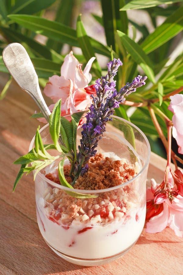 Download 凝乳草莓 库存图片. 图片 包括有 烹调, 草莓, 凝乳, 鲜美, 颜色, 快餐, 午餐, 用餐, 维生素 - 15691131