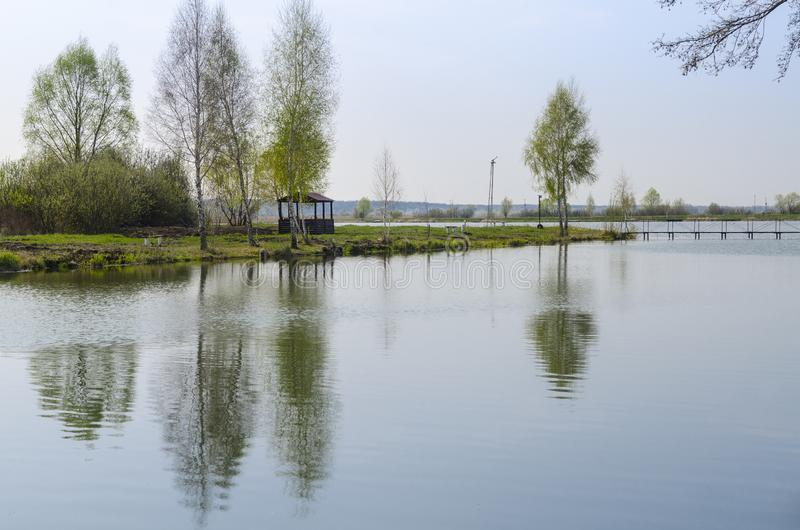 凝思木眺望台立场的一个地方湖的岸的在年轻树附近的 免版税图库摄影