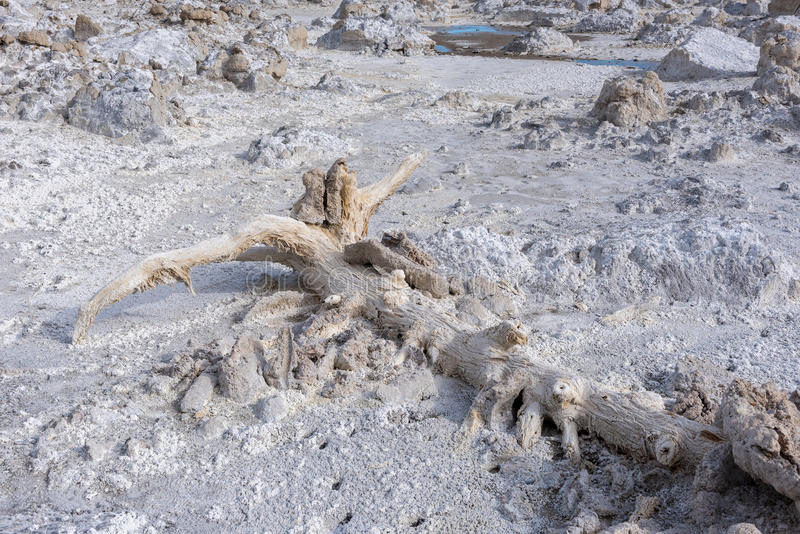 凝灰岩塔在莫诺湖,加利福尼亚 库存图片