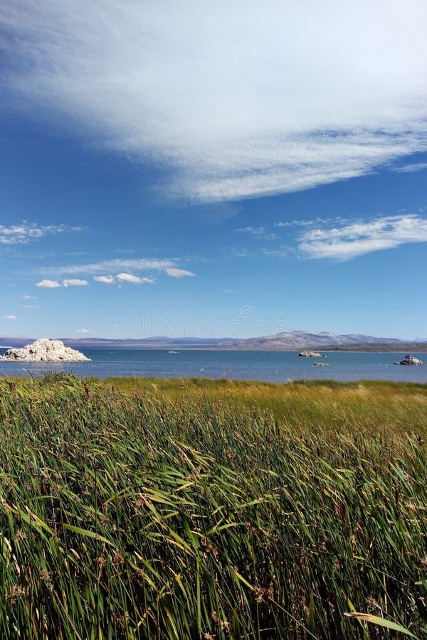 凝灰岩塔岩层在莫诺湖是淡水春天的互作用和瘤形成的钙碳酸盐尖顶和 免版税库存图片