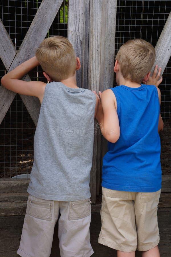 凝视通过老仓库广场篱芭的双男孩  免版税库存图片