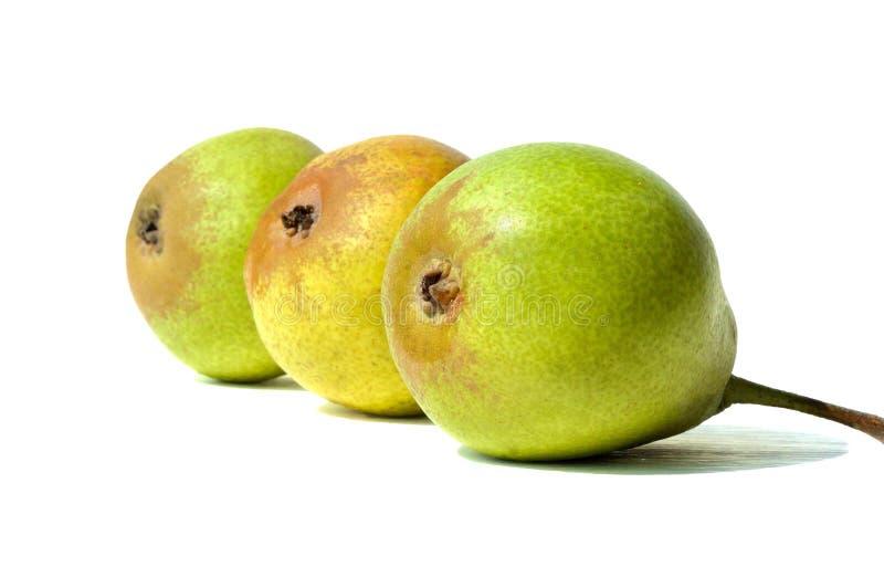 几个梨连续 库存照片