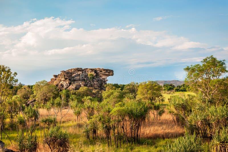 几乎典型的澳大利亚风景 免版税库存图片