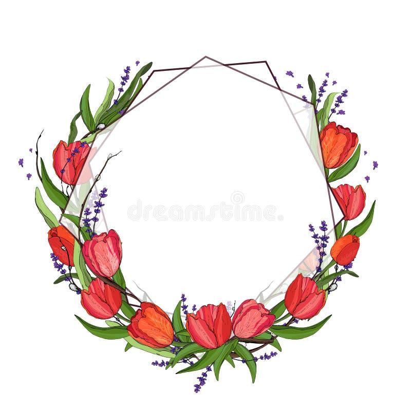 几何花框架 美丽的花圈 与美丽的郁金香的典雅的花卉收藏,淡紫色,叶子 向量例证