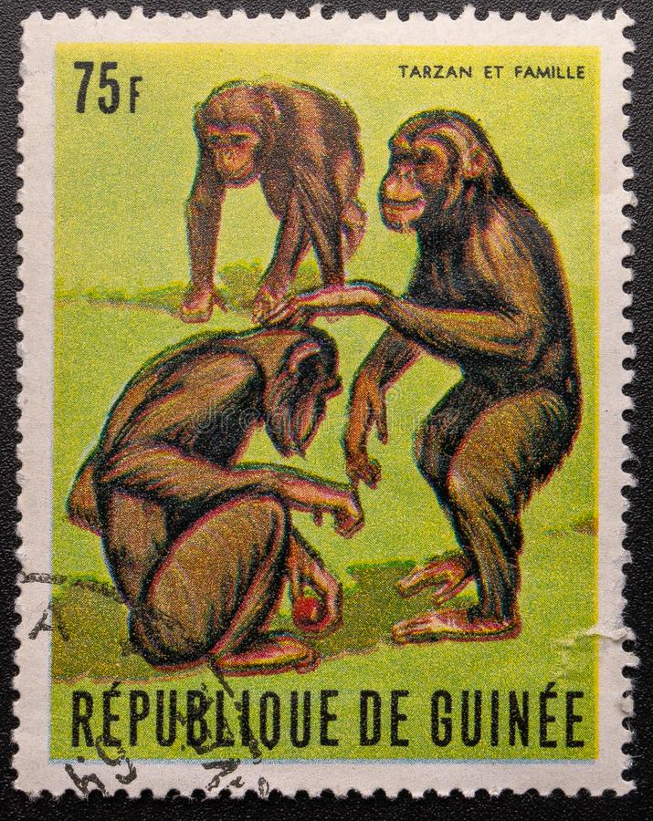 ?? 1969? 几内亚共和国 黑猩猩Tarzan 免版税库存图片