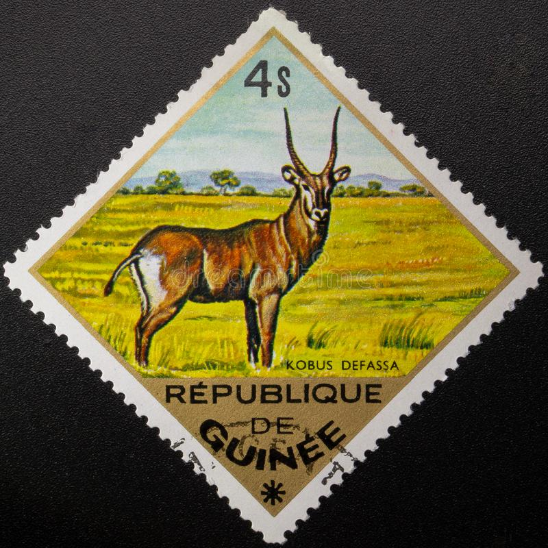 ?? 1975? 几内亚共和国 E 免版税库存图片