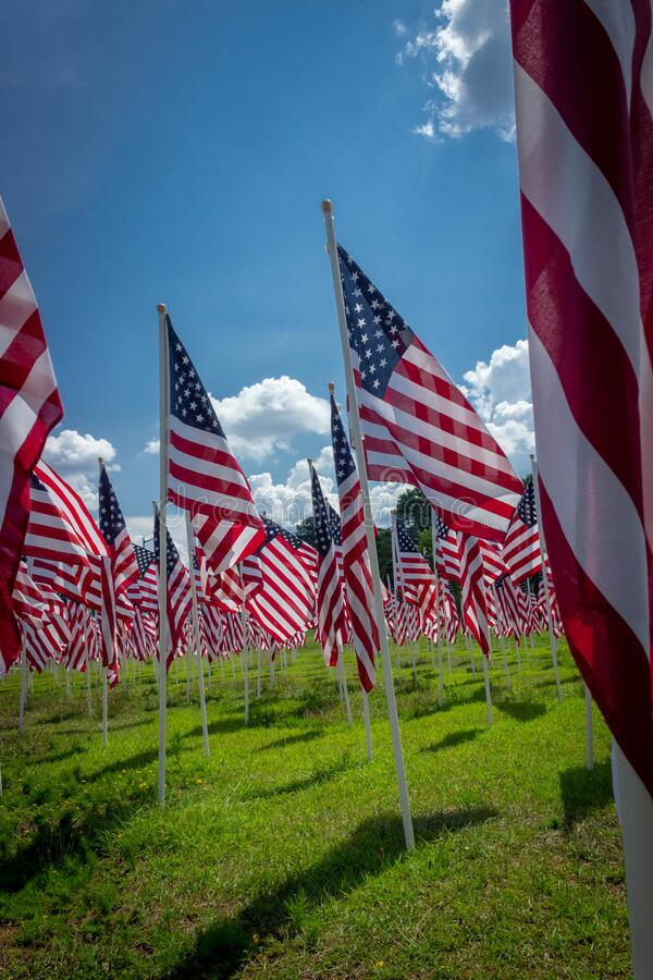 几十面美利坚合众国国旗在风中飘扬 免版税库存图片
