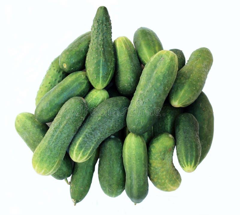 几在白色背景的绿色黄瓜 库存照片