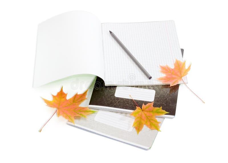 几学生练习本、铅笔和被染黄的槭树叶子 库存图片