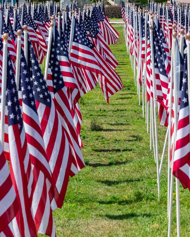 几排美丽的美利坚合众国国旗排成一列 免版税库存图片