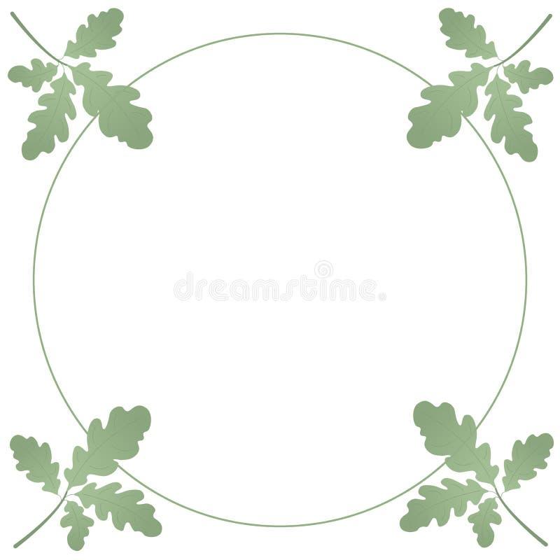 几片橡木绿色叶子花圈  植物和环锭细纱机夏天花圈  对文本和设计 皇族释放例证