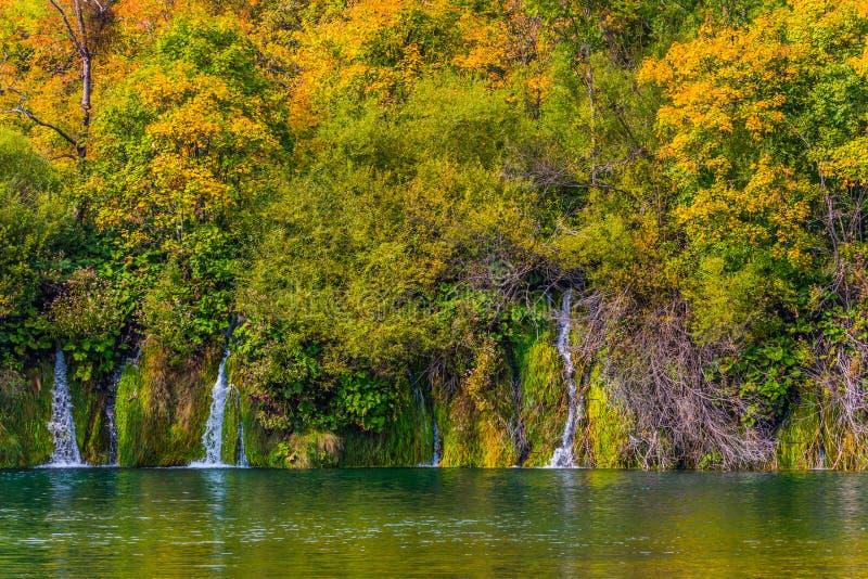 几美丽如画的瀑布,落在一个石灰岩地区常见的地形湖用鲜绿色水 秋天在克罗地亚 旅行向Plitvice湖 的treadled 免版税库存照片