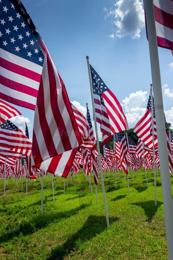 几面美丽的美利坚合众国国旗在绿野中飘扬 免版税库存照片