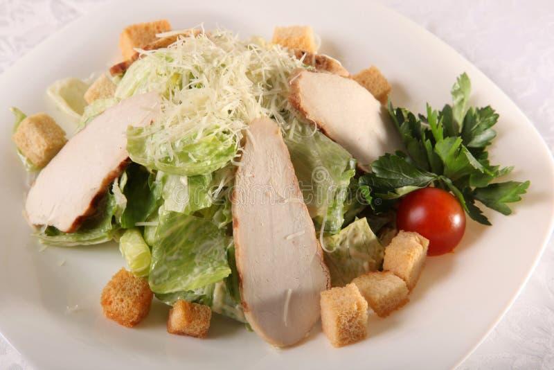 Download 凯撒鸡丁沙拉 库存图片. 图片 包括有 附属程序, 食物, 鸡蛋, 胸骨, 莴苣, 巴西, 芥末, 健康 - 72362083