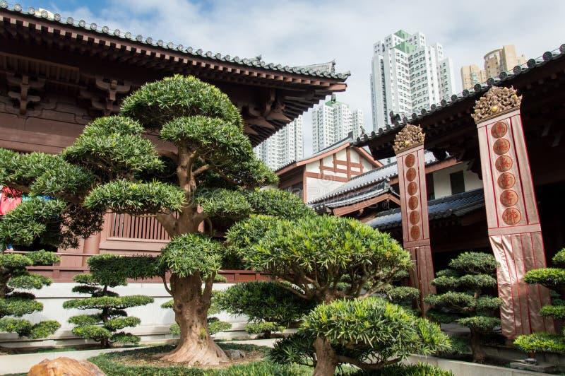 凯爱香港林女修道院 免版税图库摄影