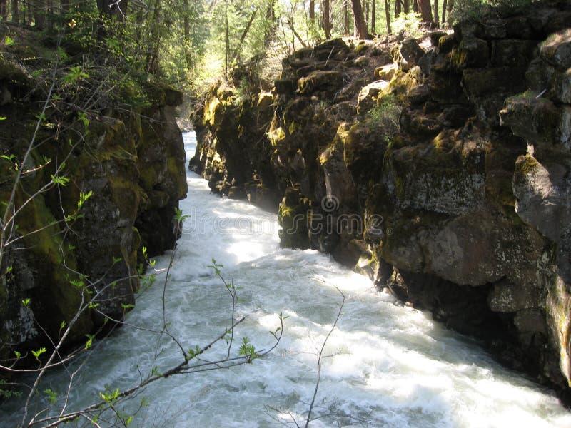 凶恶河峡谷 库存图片