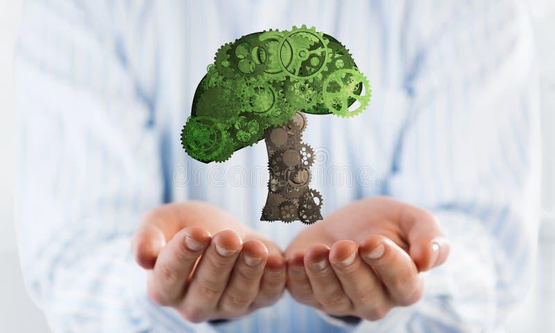出席在棕榈eco绿色概念的商人象征与树收集了钝齿轮 库存照片