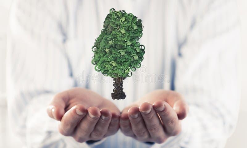 出席在棕榈eco绿色概念的商人象征了机智 库存照片