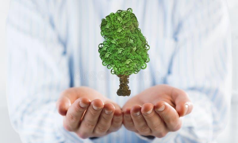 出席在棕榈eco绿色概念的商人象征与树收集了钝齿轮 免版税库存图片